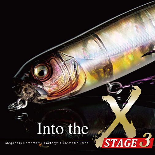 画像: Into the X Stage3|Megabass